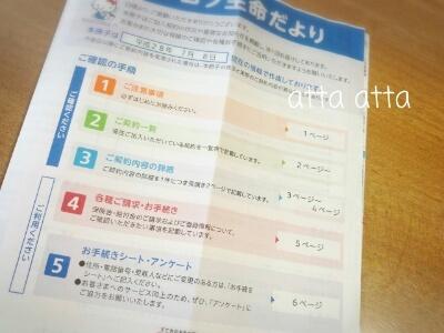 保険加入 契約 状況 お知らせ