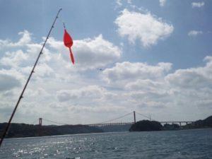 平戸 釣り