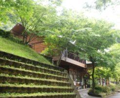 キャンプ場 ポーン太の森 朝倉