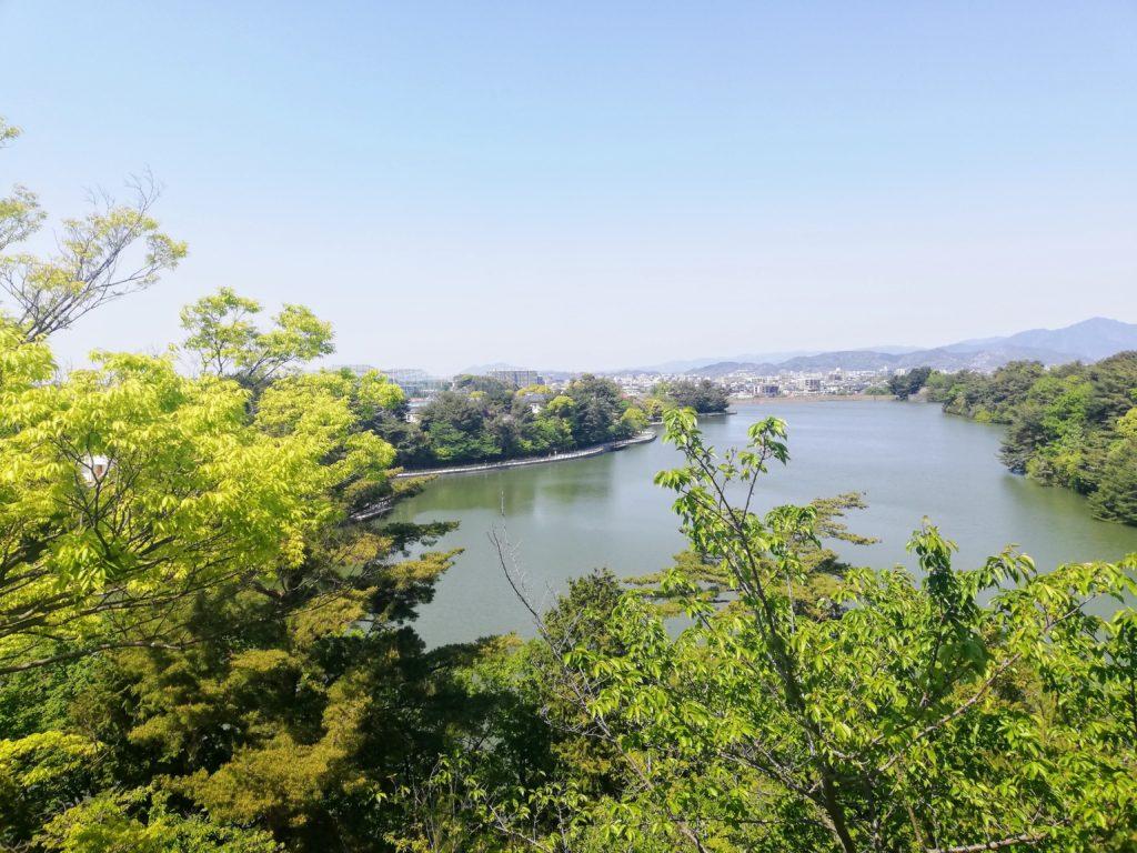 春日市 公園 緑 池